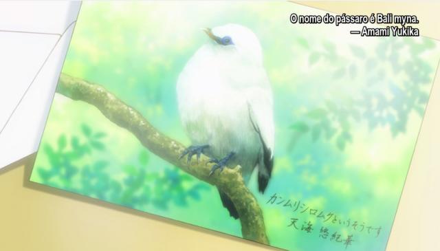 Até mais, Amami-chan!