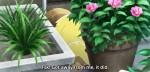 E o tanuki fez bagunça ali na vizinha!