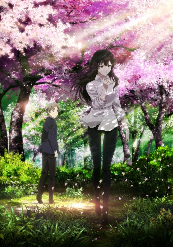 Sakurako-san no Ashimoto