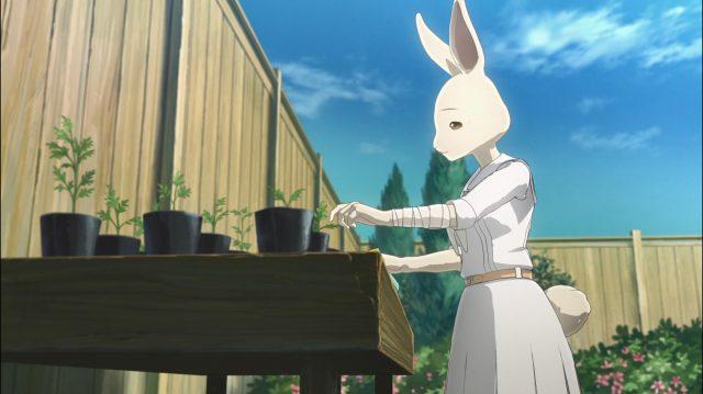 Haru só tem suas plantas para lhe fazer companhia