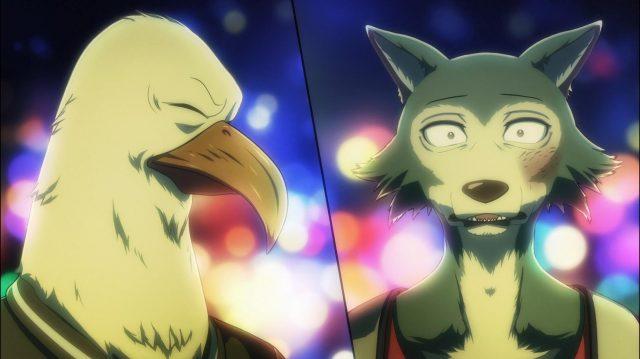 Aoba e Legosi, quando o falcão admite que não conseguiu comer carne