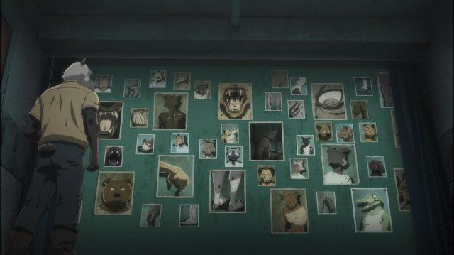 Todos os carnívoros devoradores de carne que já passaram pelo Doutor Panda